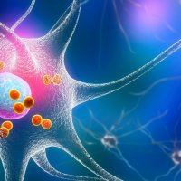 Hlavní obrázek - Blýská se na posun v diagnostice a léčbě Parkinsonovy nemoci?